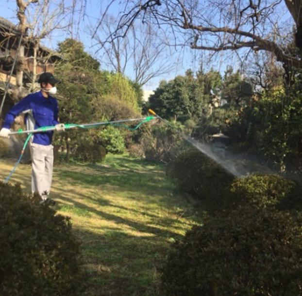 植木の消毒後の写真