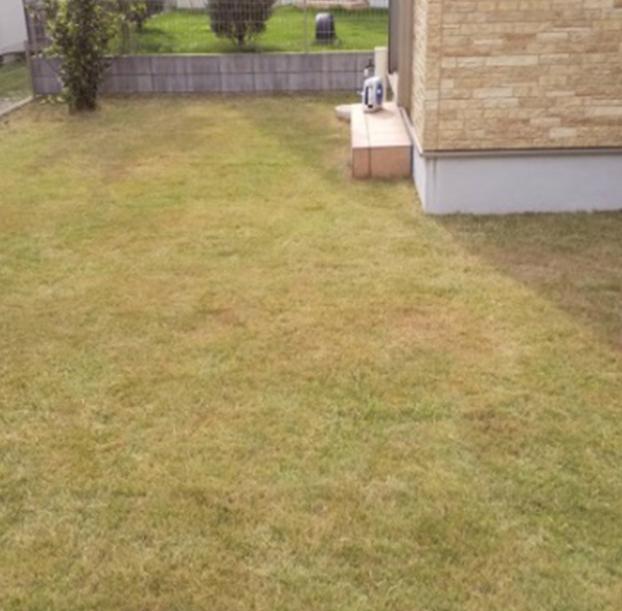芝刈り後の写真