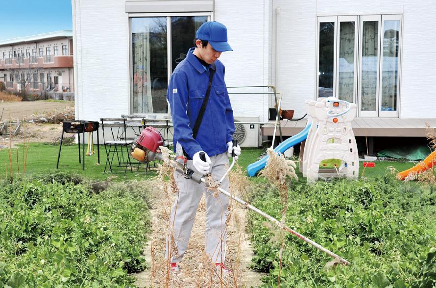 草刈り・芝刈り(機械刈り)